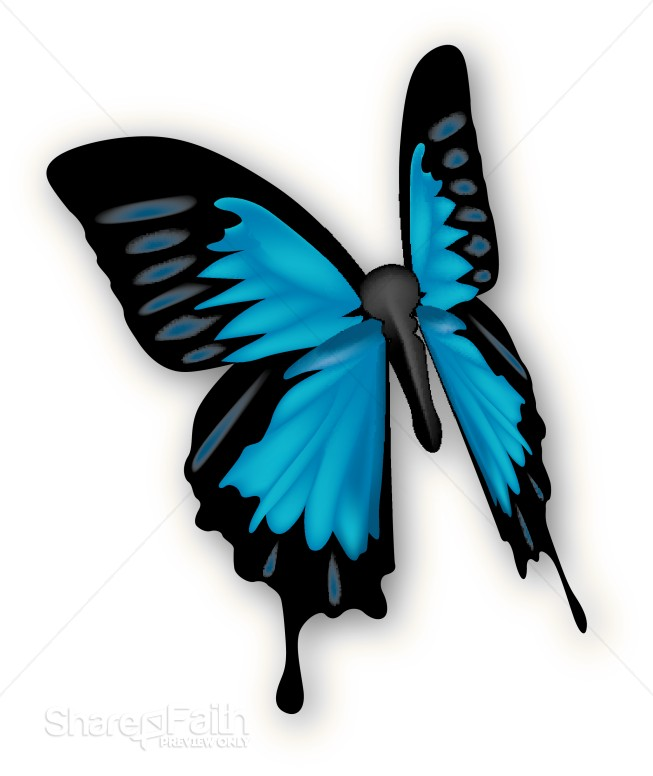 butterfly cliparts. Beautiful Blue Butterfly
